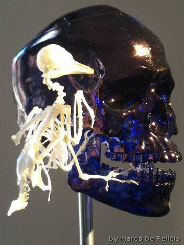 Jan Fabre, Skull with Canary