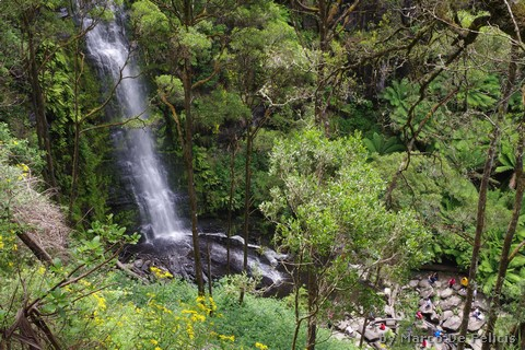 Erskine Falls, Great Ocean Road