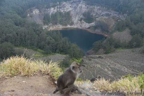 Kelimutu, Tiwu Ata Bupu and monkey